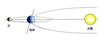 月の公転軌道.jpg